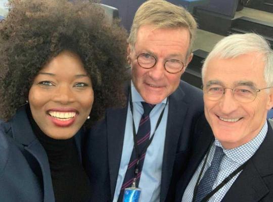 Assita Kanko, Johan Van Overtveldt en Geert Bourgeois